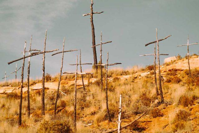 Unmarked graves in El Bosc de les Creus, Sant Salvador de Guardiola, Spain. Photo by Rubén Bagüés.