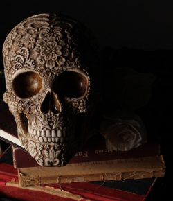 The strange saga of Beethoven's skull