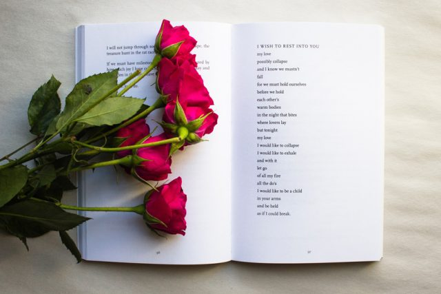 Roses on book of poetry by Photo by Thought Catalog on Unsplash.