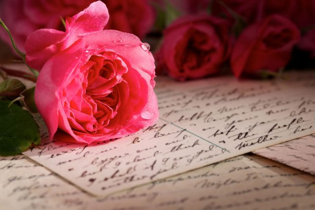 Pink rose on handwritten letters.