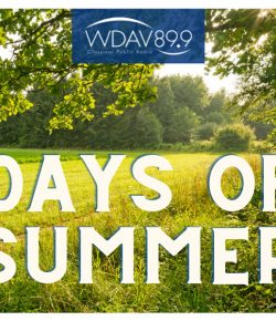 "Soak in the Sun with WDAV's ""Days of Summer"" Playlist"